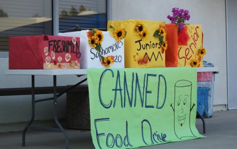 Canned food donation boxes available in the quad