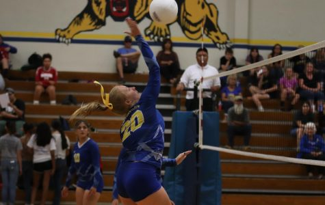 Lady 'Cats show McFarland who's boss