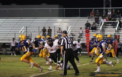 Wildcats almost come away with the win