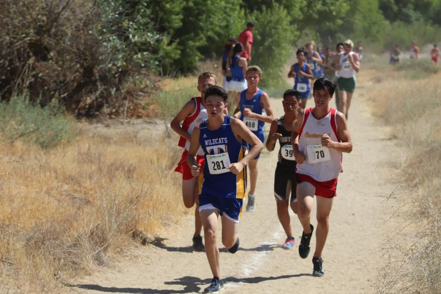 Cross country team gets a fresh start