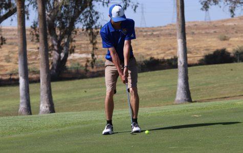 Boys golf season ends in defeat