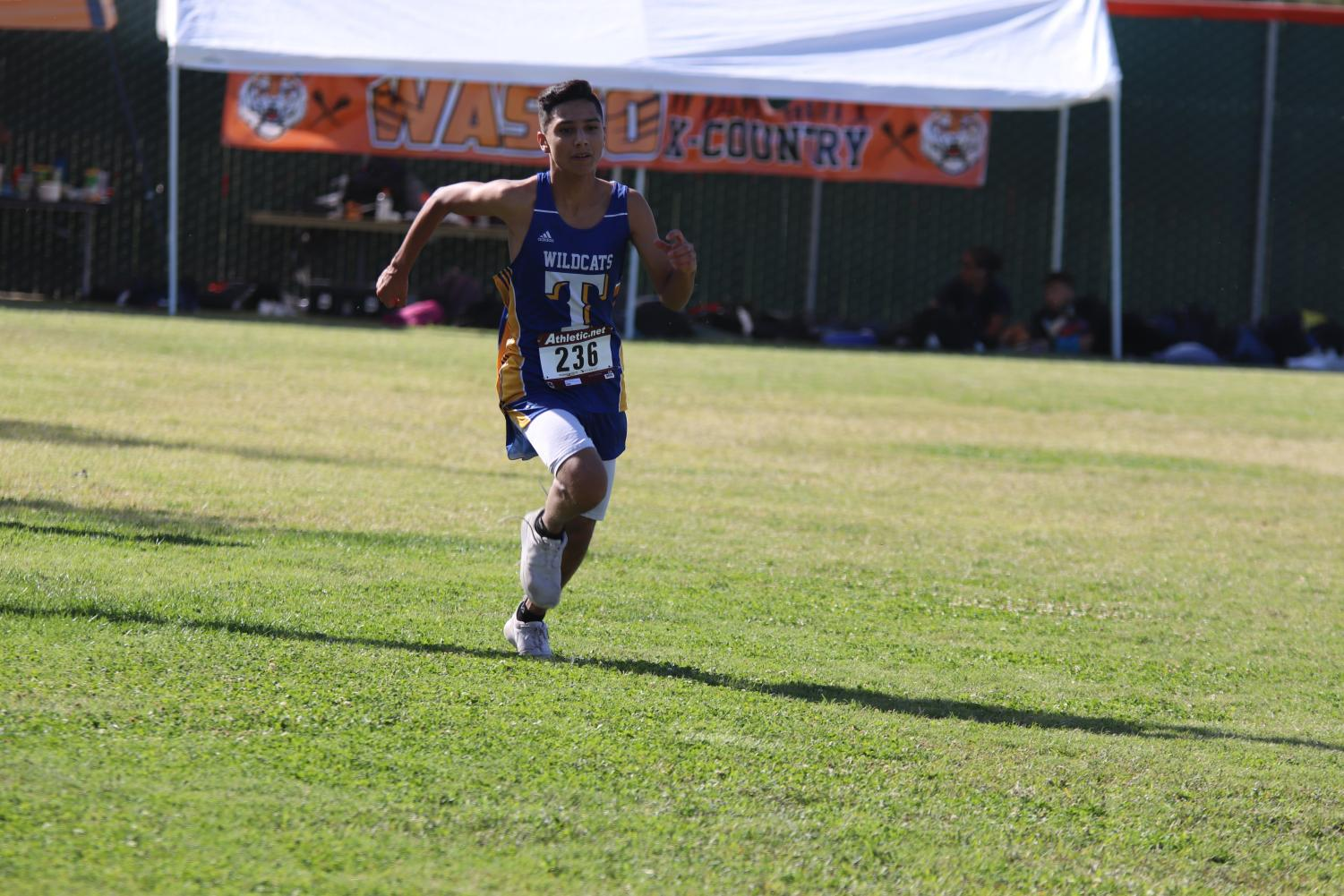 Senior Gustavo Ruiz nearing the finish line of the Wasco Invitational held at Wasco High on October 2, 2019