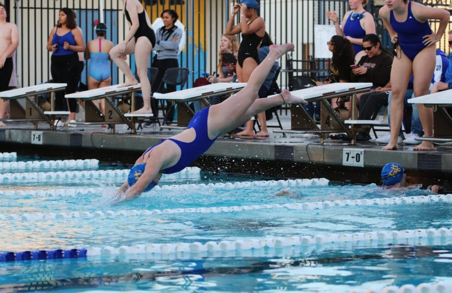 One of Taft High's swim team members diving into the water during the meet.