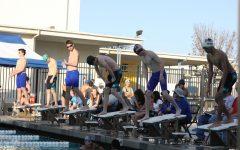 Swimmer spotlight