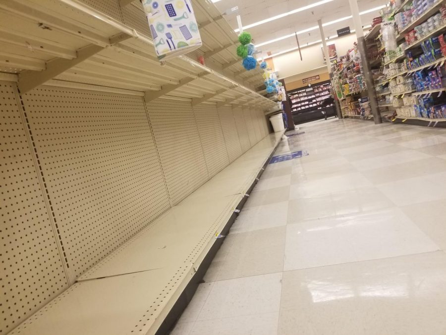 This is an up close look at the paper towel and bath tissue isle in Albertsons.