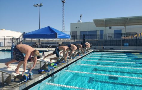 Swim and dive 2021