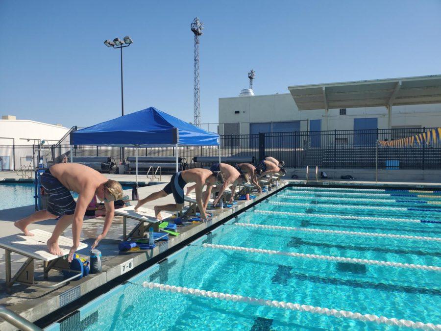 Swim+team+practicing+